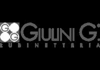 logo-giulini